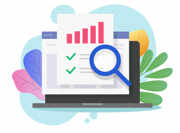 Site Audit Cost